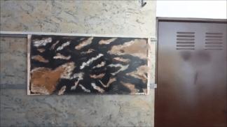Estuco Marmol Piedra con vetas (4)