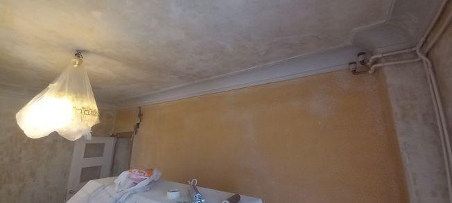 Aceite de linaza en techos y paredes (10)