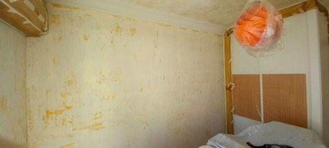 Aceite de linaza en techos y paredes (18)