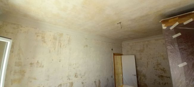 Aceite de linaza en techos y paredes (22)