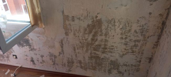 Aceite de linaza en techos y paredes (6)