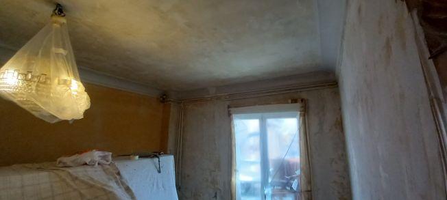 Aceite de linaza en techos y paredes (8)