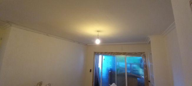 2 Tendida de Macyplast en techos y paredes (3)