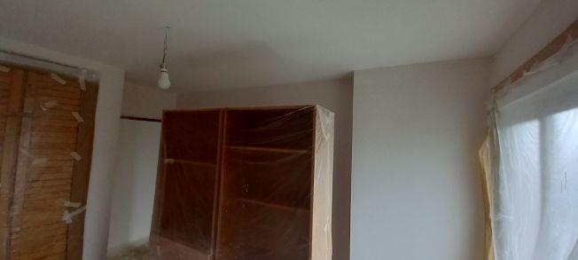 2 mano de plastico sideral s-500 en paredes (6)