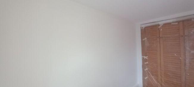 2 mano de plastico sideral s-500 en paredes (7)