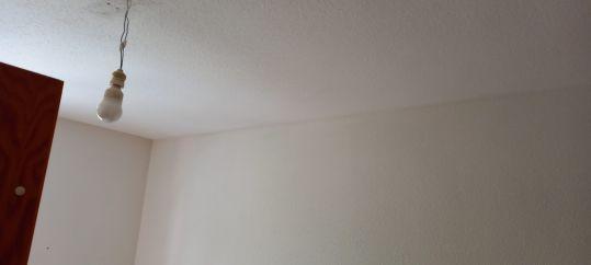 Estado Gotele plastificado en techos y paredes (13)