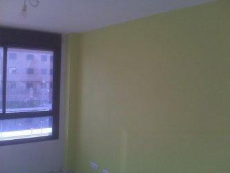 gris verde claro pintura salon pinturas plastica plastico colores