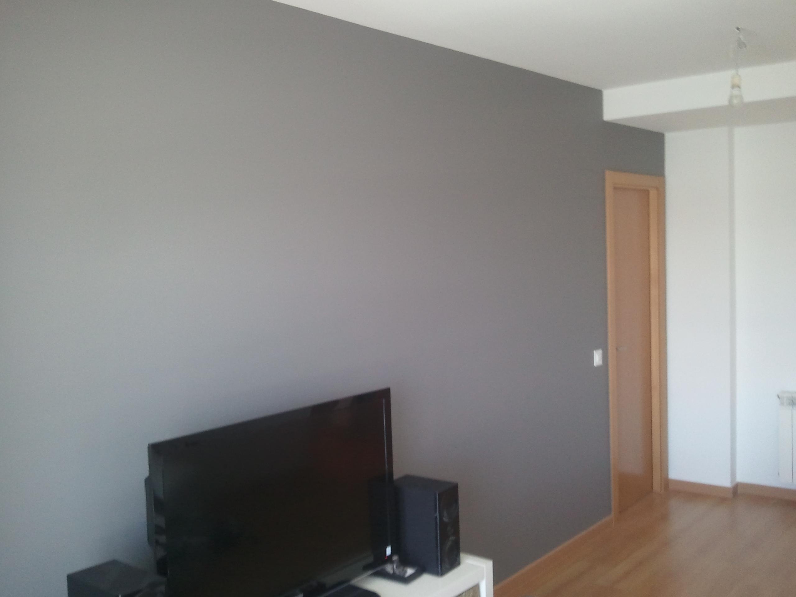 Pintura Plastica Color Blanco y Gris Oscuro  PINTORES EN