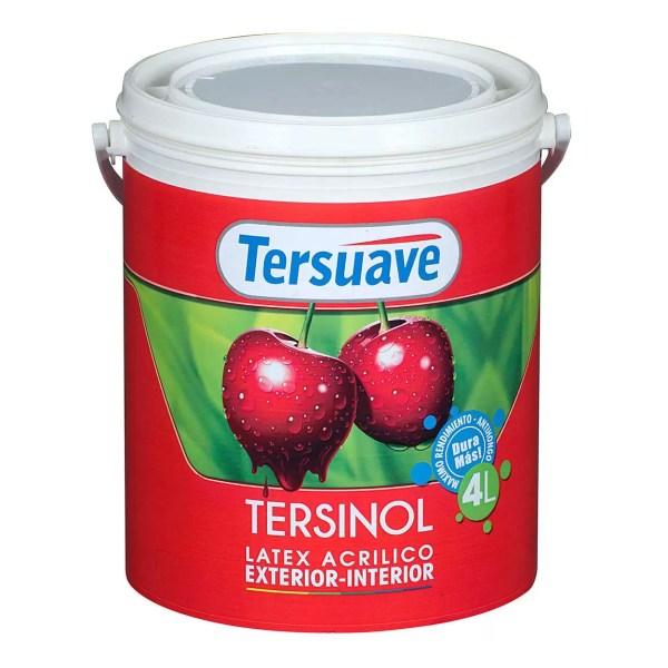 TERSINOL Ext Int 4L
