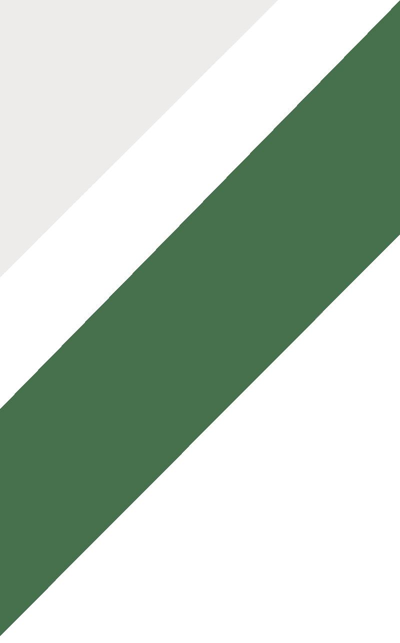 Paleta. Pinucho