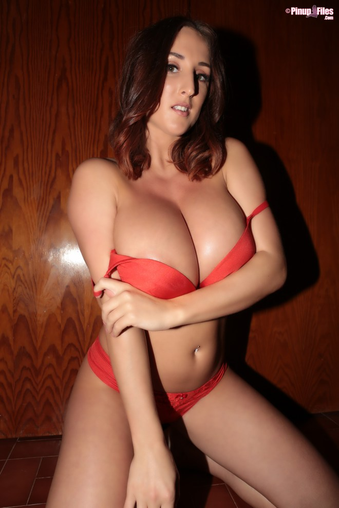 Stacey Poole - Vol. 7 - Set 1