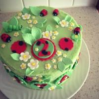 Ladybird Cake - Part 2