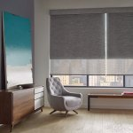 Designer Scren Shades PowerView Ashton Agora Office