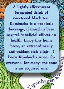 kombucha_label_back