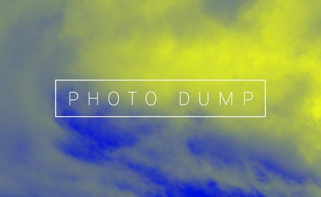 Alexis' August Photo Dump