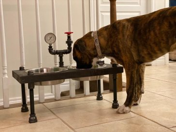 Raised Steampunk style dog bowl feeder with pressure gauge and gate valve - NEW DESIGN-Free Personalization Included