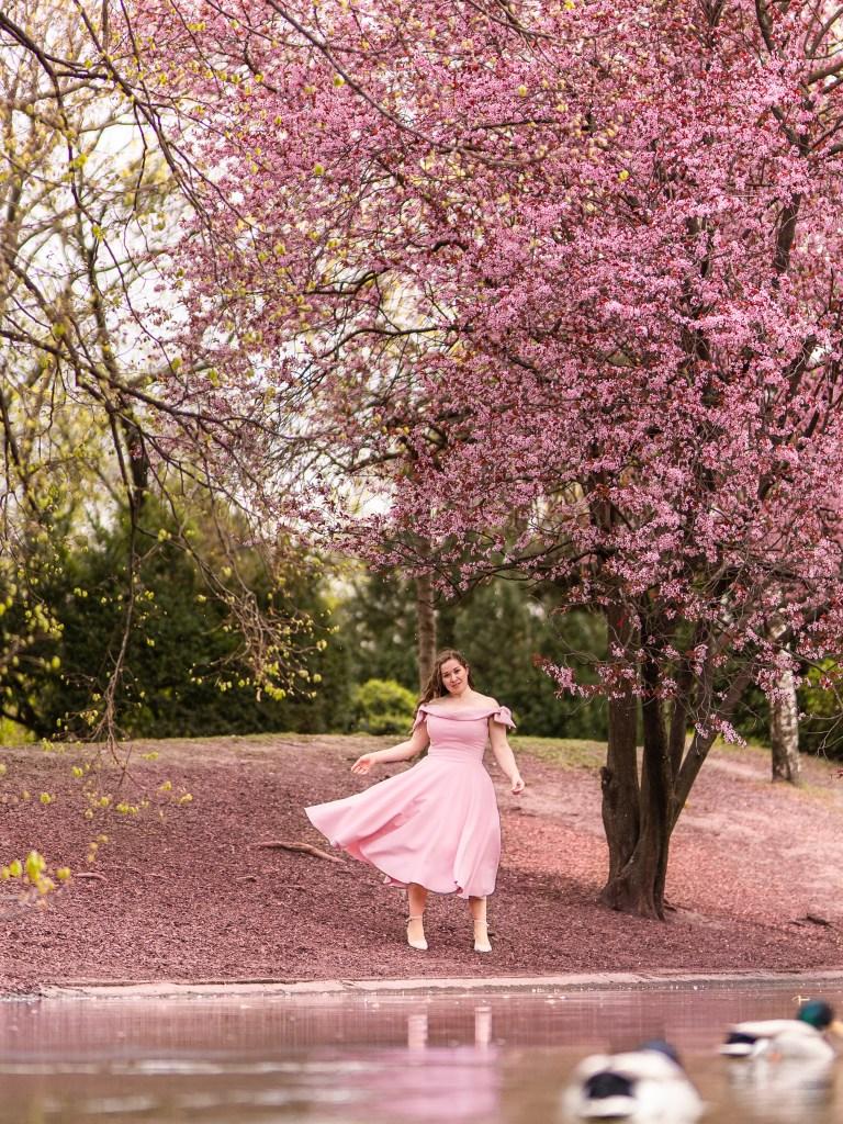 Stadtpark im Frühling