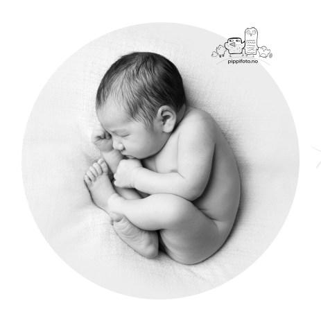 nyfødt bilder, nyfødtfotografering