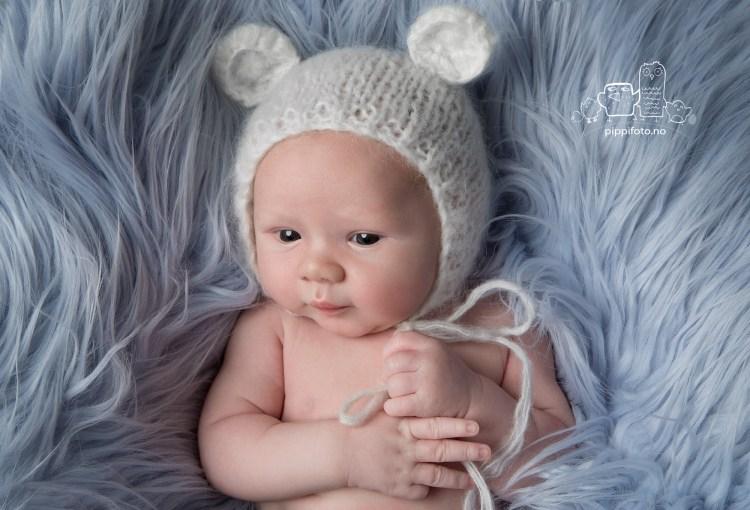 nyfødtgutt-nyfødtbaby-nyfødtfotografering-nyfødtfoto-babyfotograf