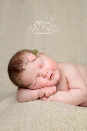 nyfødtfotograf-nyfødtfoto-nyfødtjente-babyfoto-nyfødtbaby-amming