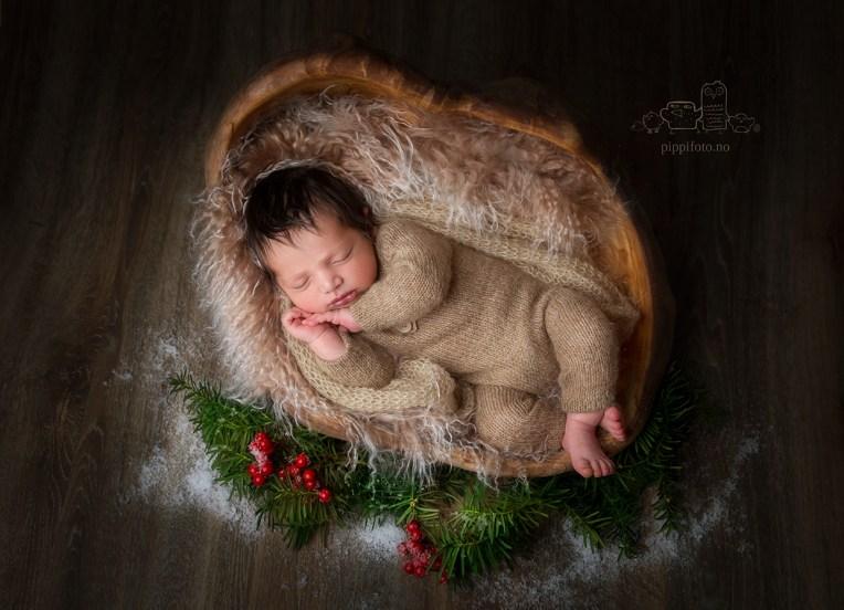 julekortfotografering, nyfødtfotograf, nyfødt baby