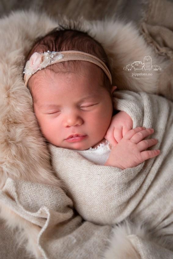 familiefotografering_nyfødtfotografering_oppegård