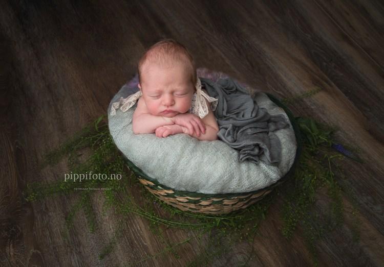 nyfødtfotografering-Follo-babyfotograf-nyfødtbilder-gravidfoto-nyfødtjente-gavekort