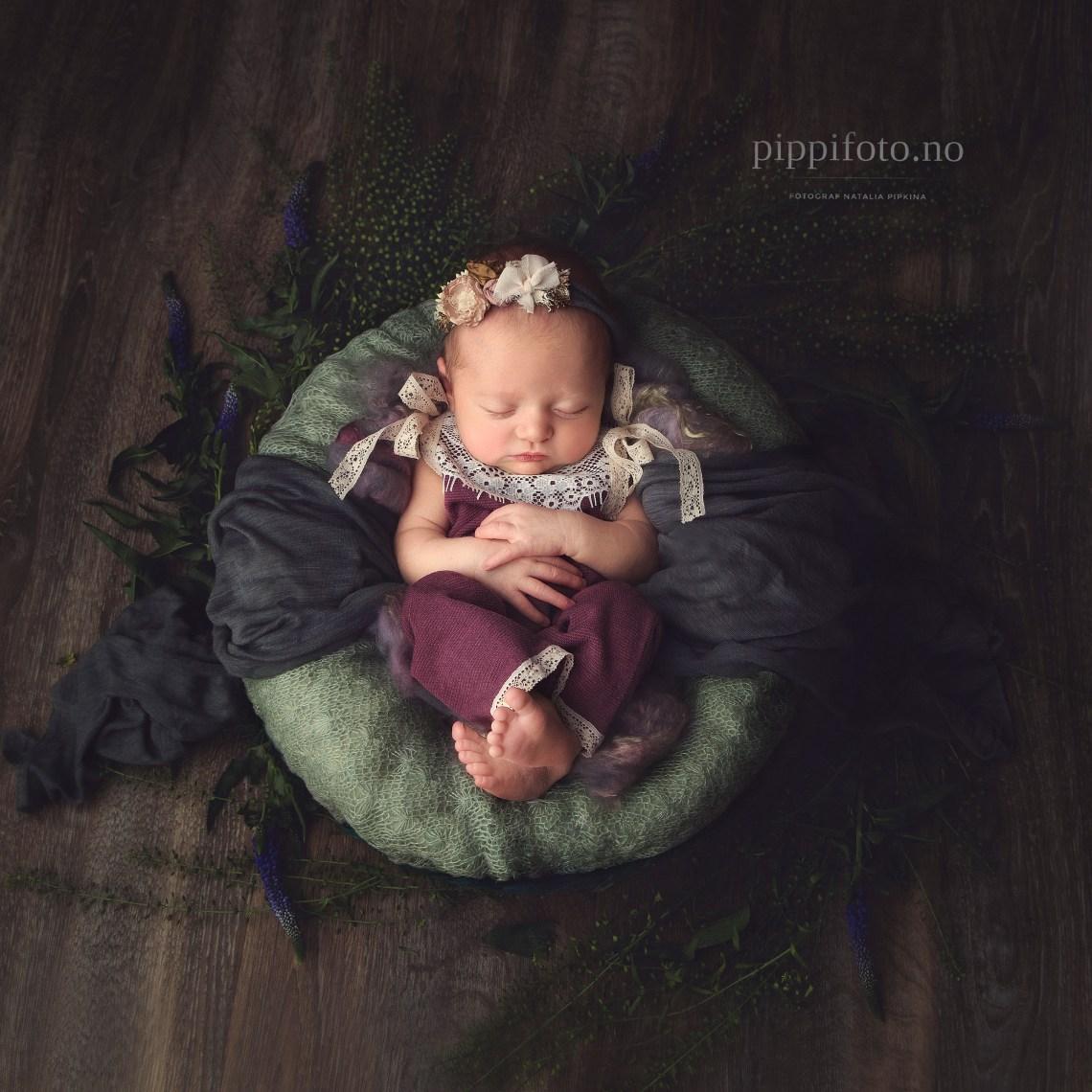 nyfødtfotografering-oslo-fø-fotograf-babyfoto-nyfødtbilder-Venter-låve-gravid-nyfødtfoto-babyshower-jente