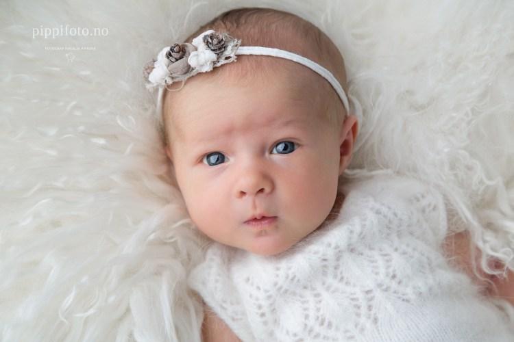 nyfødtfotografering-newborn-nyfødtjente