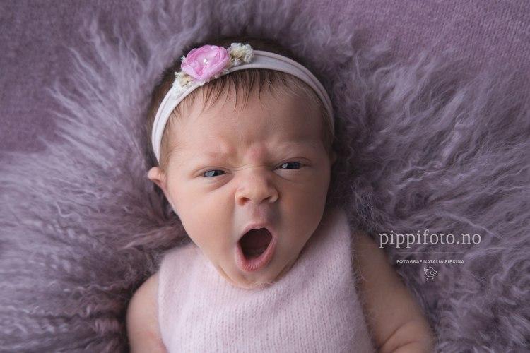 nyføtbaby-babyfotografering-nyfødtbilder-nyfødtfotografering