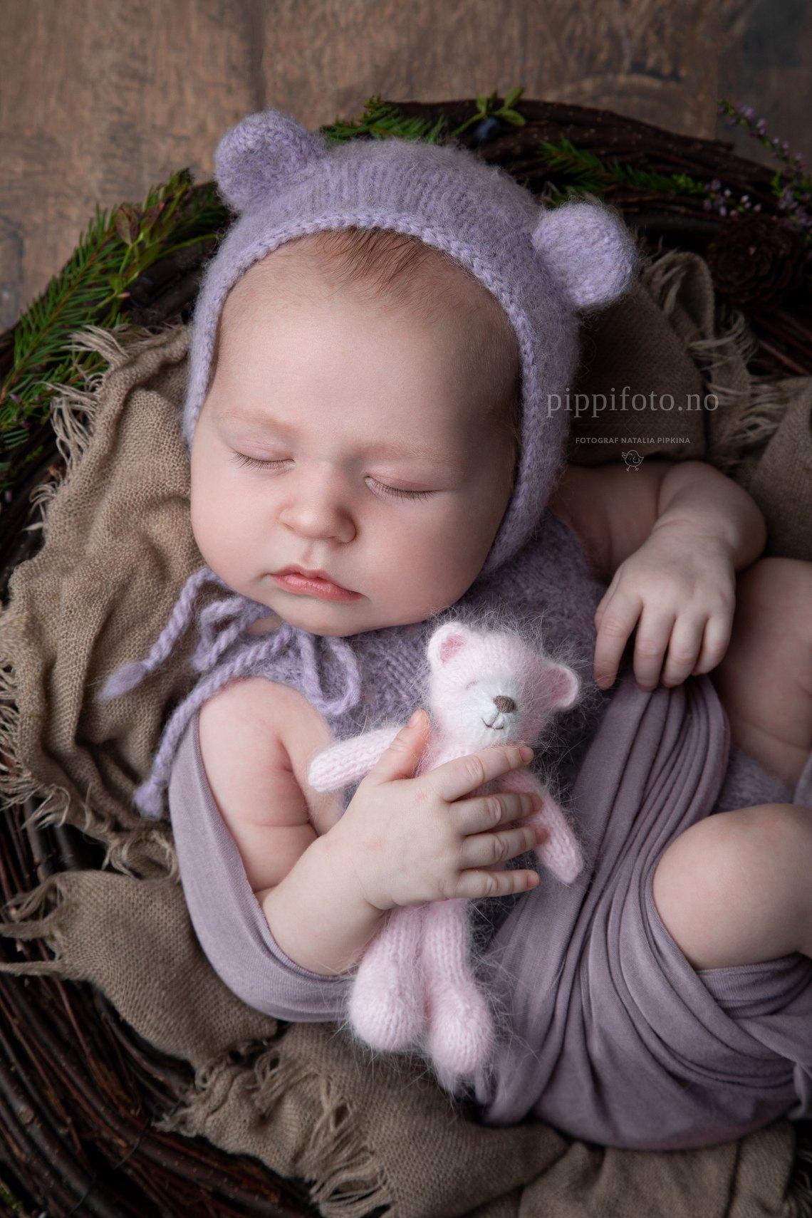bjørnen-sover-nyfødtfotografering-akershus