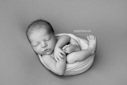 nyfødtbilder-nyfødtfotograf-Oslo-babyfotografering