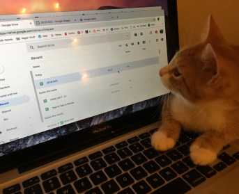 58. Pip working on Google Docs