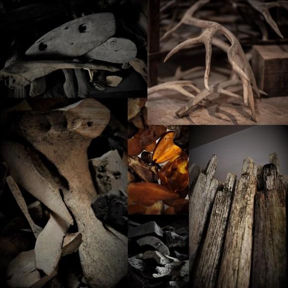 ambre de la baltique bois de renne chene de tourbière morta bois de caribou reindeer antler baltic amber bog oak fossil fossilized walrus bone jawbone