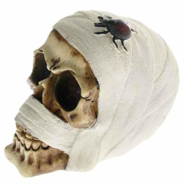Mummy skull detail