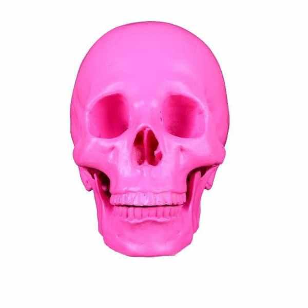 Pink skull decor