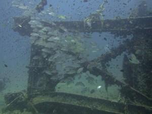_2-divers