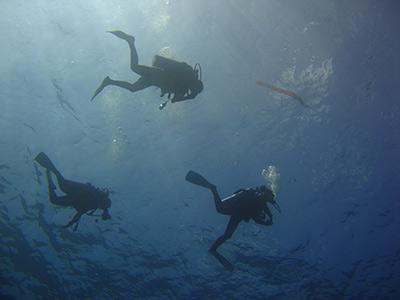 similan-divers