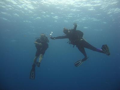Divers in Similans