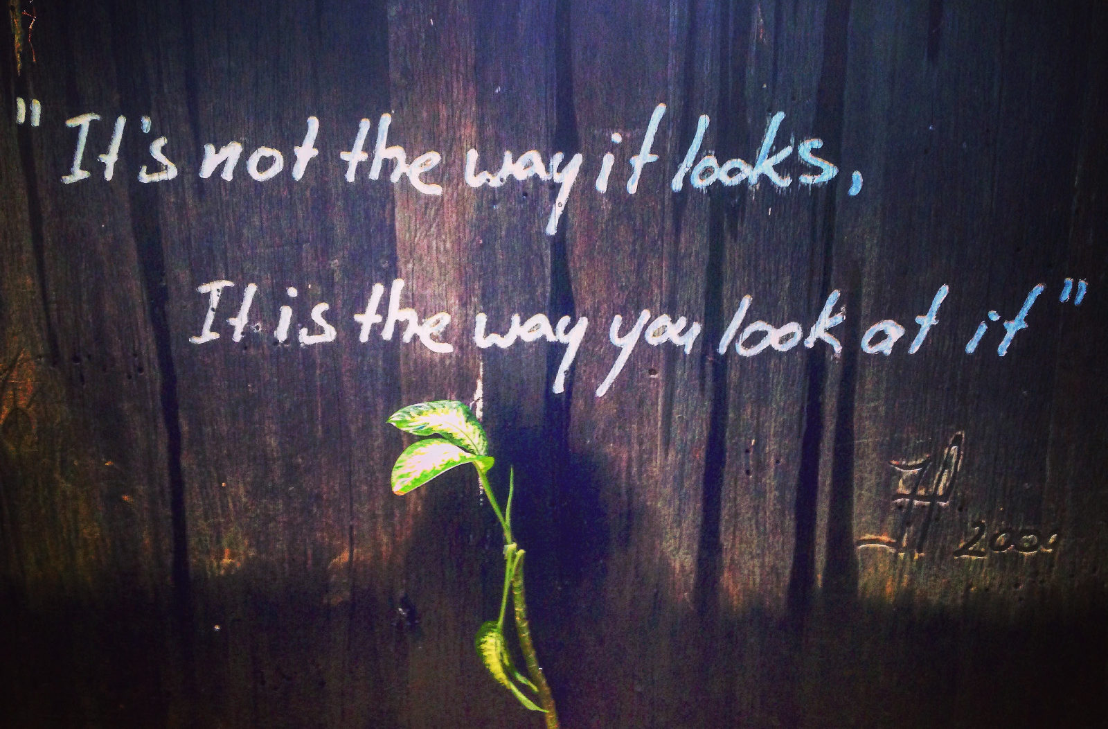 the way you look at it