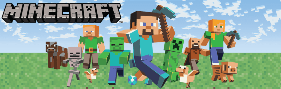 minecraft_rules_banner_piratecraft