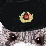 Profile picture of SlavicFerret