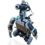 Cogito mobile pirate robot