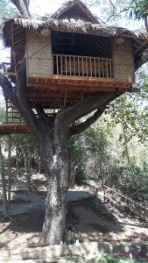 Tree house accommodation at Pirates Diving Resort, Coron