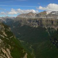 Cinco nuevas camadas de osos en el Pirineo