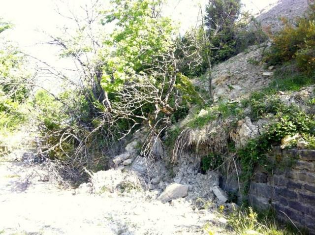Arboles caídos a la salida de Villanivilla (boj y espino albar)