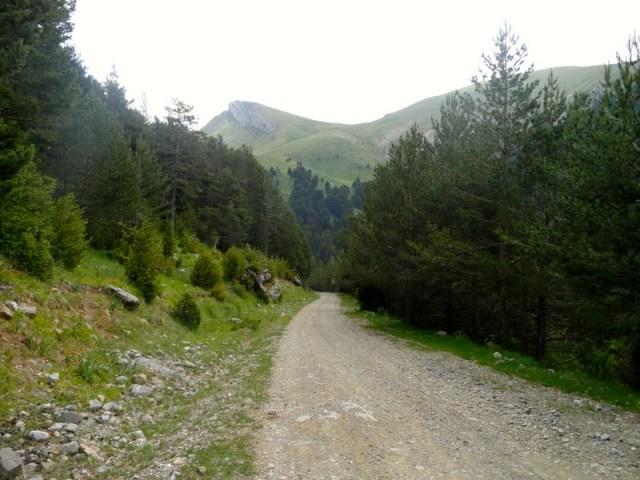 Pista en perfectas condiciones, con un paisaje muy alpino, ene l que la altura ya no permite el crecimiento de árboles y el verde comienza a tomar el relevo del blanco.