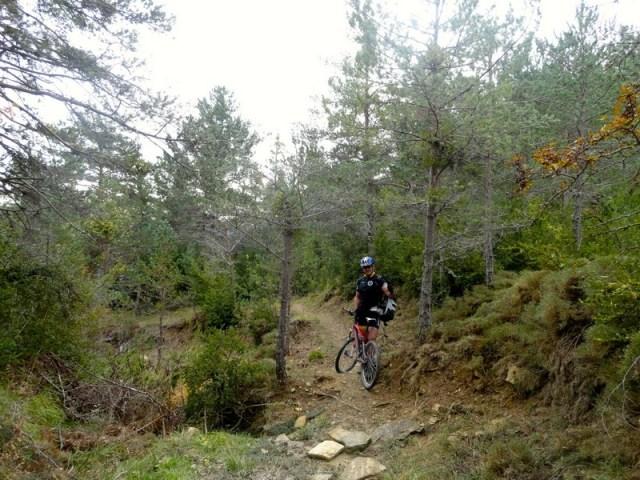 Salida de las rocas, para volver al bosque