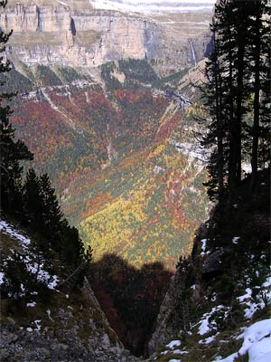 Valle de Ordesa en Otoño desde Faja Pelay