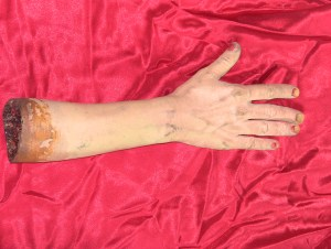 Fake arm with missing finger tips from Curse of the Queerwolf